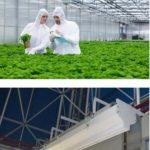 تجهیزات گلخانهای