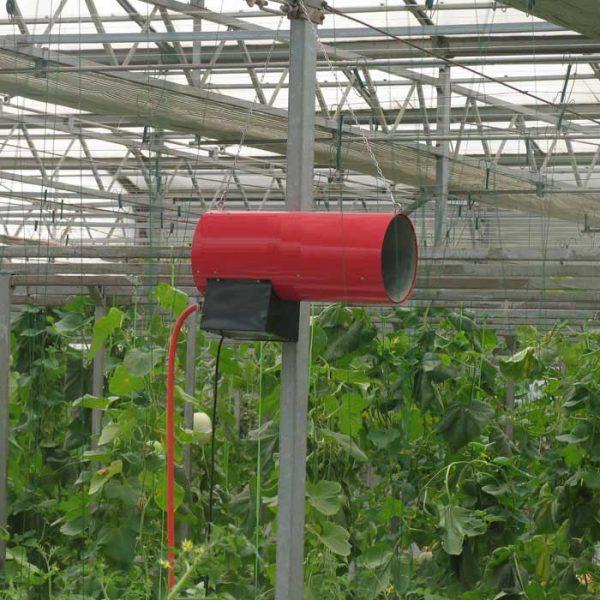 پاسخ گیاهان به دی اکسید کربن
