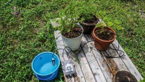 آموزش ساخت سیستم آبیاری سطلی برای گلخانههای کوچک