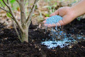 7 روش برای تهیه کود گیاهان در خانه