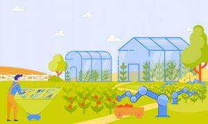 مقررات عمومی در مورد گلخانه