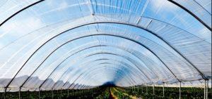 تولید انواع لوله گلخانه