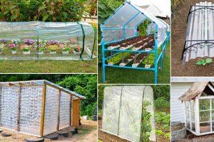 5 طرح برای ساخت گلخانه ارزان