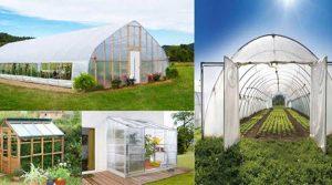 انواع گلخانه براساس کاربرد و شکل ظاهری آن ها