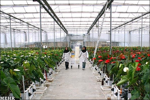 گلخانه های آموزشی
